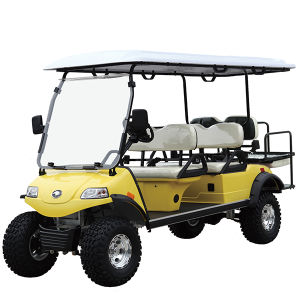 Hunting Golf Cart (DEL2042D2Z, 4+2seat) pictures & photos