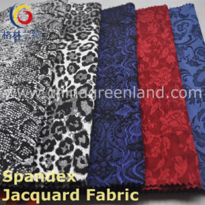 Nylon/Rayon Twill Warp Elastic Fabric with Jacquard Garment (GLLLDTH001) pictures & photos