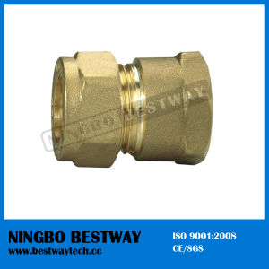 High Performance Brass Pipe Fitting Manufacturer (BW-501) pictures & photos