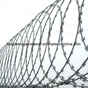 Galvanized Concertina Razor Barbed Wire with High Security (KDL-24) pictures & photos