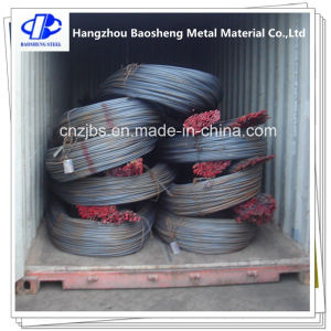 BS4449 Concrete Building Black Steel Rebar Steel Iron Bar pictures & photos