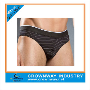Customized Nylon Sexy Boxer Briefs for Mens pictures & photos