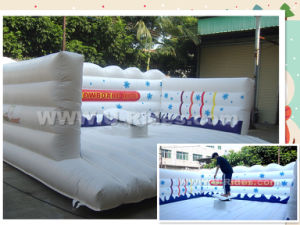Sports Inflatable Mechanical Snowboard Rides pictures & photos