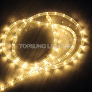 China Whole Warm White 1 2 12v Led Rope Lights Outdoor Use Light