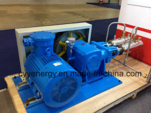 Cyyp 74 Uninterrupted Service Large Flow and High Pressure LNG Liquid Oxygen Nitrogen Argon Multiseriate Piston Pump pictures & photos
