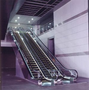 Vvvf Drive Indoor Residential Escalator Cost