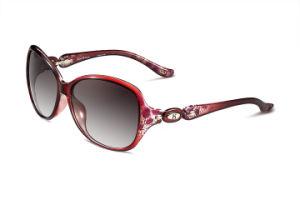 cc8c7d0761f63 China Helen Keller Women Sunglasses - China Women Sunglasses
