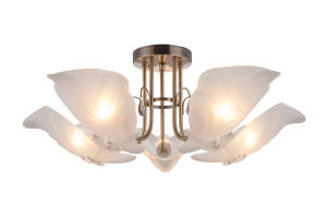 Home Decor Ceiling Light