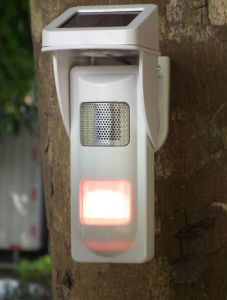 Solar Alarm PIR Detector with Sound and Light Alert No Trespassing pictures & photos