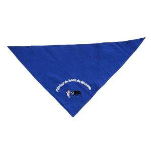 2020 Hot Sale Multifunctional Bandana pictures & photos