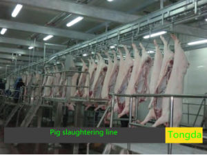 Pig Slaughter Machine Made Inchina pictures & photos