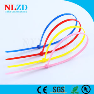 d1a6691ef821 China Durable Selflocking Nylon 6/6 cable ties, UL approved - China ...