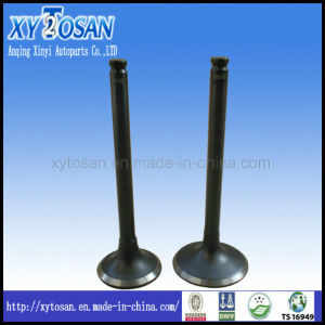 China Mitsubishi Engine Valves, Mitsubishi Engine Valves