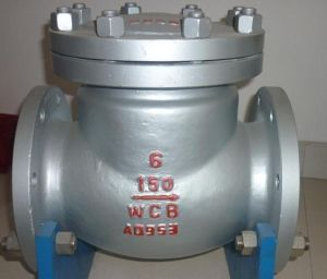 ASTM/ANSI150lb Swing Flanged Check Valve 150lb (ASTM A182 WCB) pictures & photos