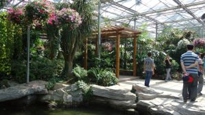 Eco-Sightseeing Greenhouse Conservatory / Hothouse / Big Grower