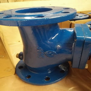 Double Flanged Ball Check Valve pictures & photos