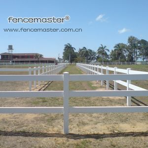 PVC Horse Fence pictures & photos