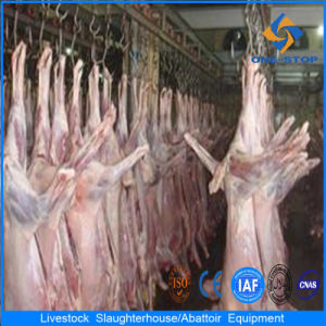 Sheep Slaughterhosue Processing Line Equipment
