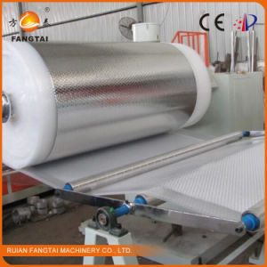 PE Air Bubble Wrap Machine (CE) pictures & photos