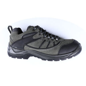 Men ′s Hiking Shoes