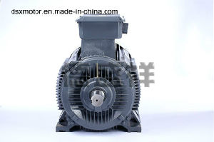 Customized Special Mechanical Equipment Motor 400kw Three Phase Asynchronous Electric Motor AC Motor