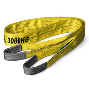 En 1492-1 Ce & GS Certified Polyester 3t Lifting Sling pictures & photos