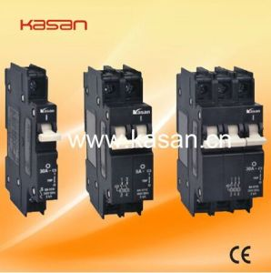 QA 63A 230V AC 1p, 2p, 3p Hydraulic Magnetic Circuit Breaker pictures & photos