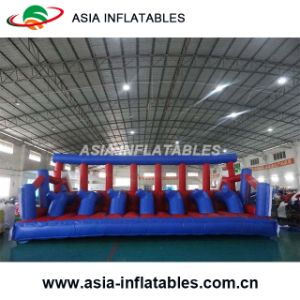 Popular Inflatable Pink Bouncer pictures & photos