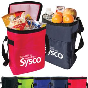 Promotional Polyester12-Pack Cooler Bags (PM249) pictures & photos