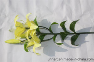 Wholesale Popular Artificial Lily Flower pictures & photos
