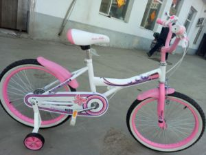 "20"" Girls Bicycle Pink Child Bikes pictures & photos"