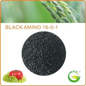 Organic Granular Fertilizer - Humic Acid Amino Acid pictures & photos