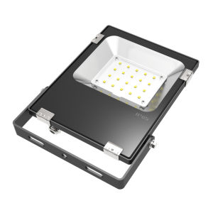 20W Outdoor/Indoor LED Flood Light