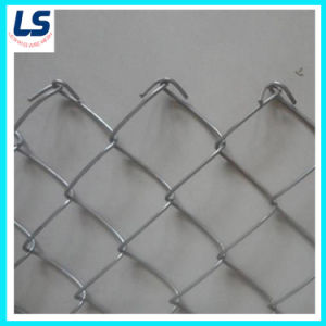 High Quality Electro Galvanized/PVC-Coated Chain Link Fence