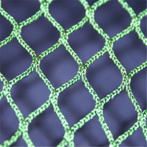 PP Knotless Cargo Net pictures & photos