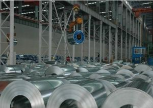 Galvanized Steel Sheets/ Gi/High Good Quality pictures & photos