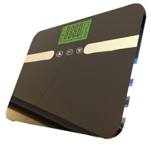 Bathroom Weighing Kitchen Luggage Body Fat Scale (EF834)