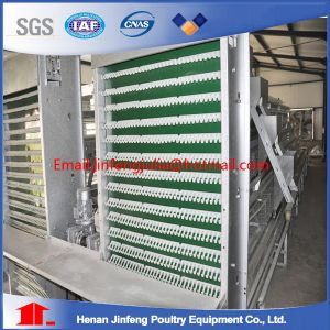 Chicken Cage Made in China for Poultry House pictures & photos