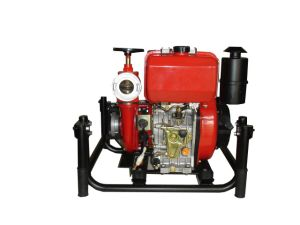Diesel Fire Fighting Pump (DF65P) pictures & photos