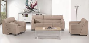 High Quality New Design Sofa pictures & photos
