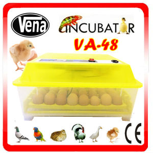CE Approved Mini Egg Incubator Hold 48 Eggs with Automatic Control Incubator pictures & photos