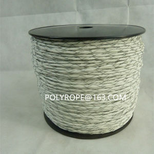 White Electric Rope pictures & photos