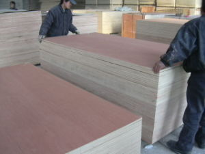 18mm BB/CC Grade Commercial Plywood
