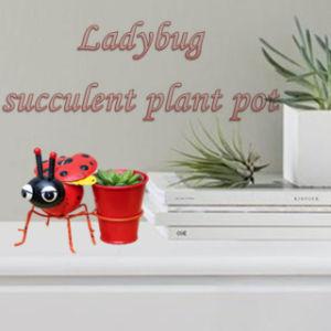 Cute Metal Ladybug Succulent Plant Pots Home Decor China Manufacturer