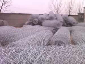 Anti Corrosion High Quality Hexagonal Gabion Box Good Price China pictures & photos