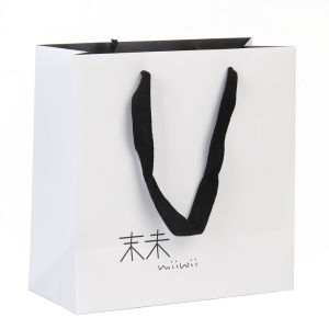 Paper Bag / Paper Shopping Bag pictures & photos