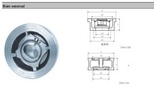 Stainless Steel SUS304 Wafer Spring Lift Disco Check Valve pictures & photos