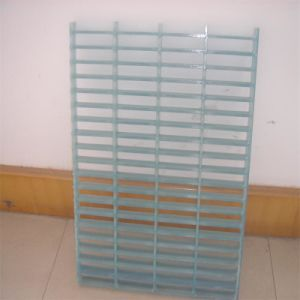 FRP Transparent Gratings, FRP Lucid Gratings, FRP Crystal Gratings pictures & photos