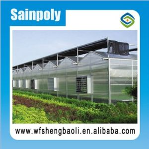 Polycarbonate Greenhouse for Vegetables Growing pictures & photos