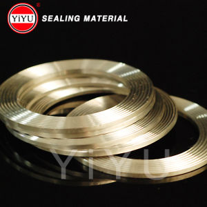 Basic Type a Metallic Spiral Wound Gaskets pictures & photos